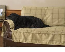 pet sofa covers that stay in place sofa covers dog couch protector orvis uk