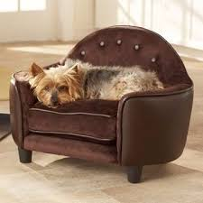 Pet Chaise 124 Best Pet Images On Pinterest Pet Beds Sofas And Dog Cat