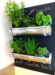 indoor herb gardens indoor herb pots gutter herb garden indoor herb garden set