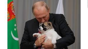 vladimir putin puppy birthday cnn