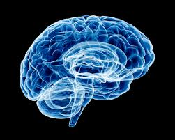 Brain Mapping Fears Of Science And The Church Are They All In The Head