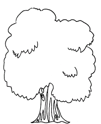 banyan tree coloring pages kids sg printable trees coloring