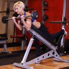 Bench Bicep Curls Women U0027s Summer Muscle Building Plan