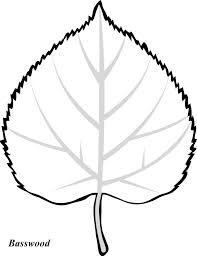 fall leaves cartoon free download clip art free clip art on