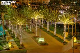 Decorating Palm Trees For Christmas tampa holiday lighting services christmas light service