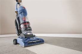 The Best Vaccum The Best Vacuum For Cat Litter Fluffy Kitty