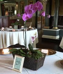 orchid centerpiece best 25 orchid wedding centerpieces ideas on blue