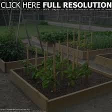 designing a vegetable garden layout vegetable garden layout design the garden inspirations garden