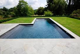 what are the top trends in swimming pool shapes shoreline pools