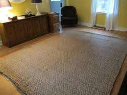 modern home decors flooring attractive jute rugs for family room ideas decor