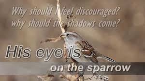 his eye is on the sparrow instrumental