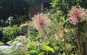 planting the seeds of innovation native plants gardening app 11 garden ideas to steal from buffalo new york gardenista