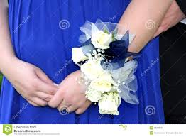blue corsages for prom wrist corsage prom stock photography image 19646822