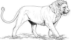 lion king coloring page u2014 fitfru style online lion king coloring
