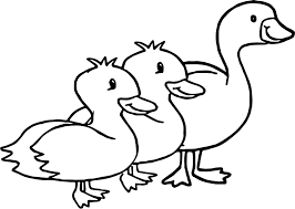 duck goose animal coloring page wecoloringpage