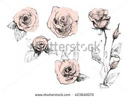 Flowers Designs For Drawing Flower Sketch Stock Images Royalty Free Images U0026 Vectors