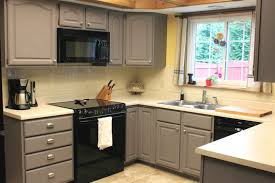 Inside Of Kitchen Cabinets Beautiful Design What Type Of Paint To Use On Kitchen Cabinets