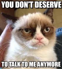 Don T Talk To Me Meme - you don t deserve grumpy cat reverse meme on memegen