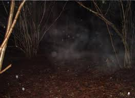 houses haunted house stretched halloween clouds sky nature the chilling story of u0027sally in the wood u0027 somerset u0027s creepy