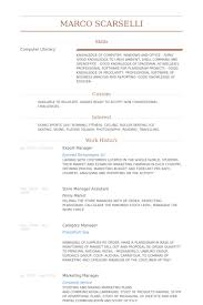 Brand Manager Resume Sample by Export Manager Resume Samples Visualcv Resume Samples Database