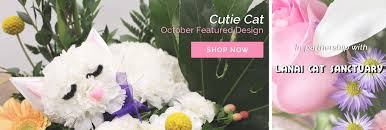 flower delivery honolulu 100 hawaii flowers delivery best 25 flower delivery uk