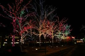 Lincoln Park Zoo Holiday Lights by Commercial Holiday Lighting Installation U2014 Illuminight Lighting