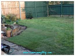 removing our pond our garden makeover part 1 new mummy blog