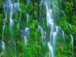 Photos 20 mossbrae falls california