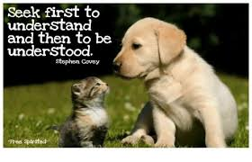Stephen Dog Meme - seek first to understand and then to be understood stephen covey