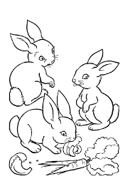 bunny ears coloring page bunny to color haverhillsedationdentistry com