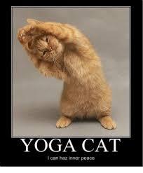 Peace Meme - yoga i can haz inner peace yoga meme on me me