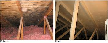 how to clean bluestone how to clean moldy attics bluestone