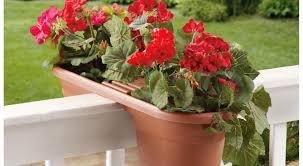 unique indoor planters plant beautiful red planters pretty planters 20 of them red