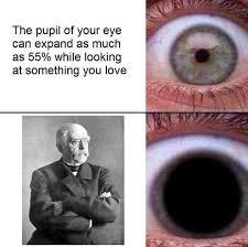 German Memes - german empire memes