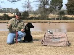 Dog Blinds Eukanuba Presents Training Your Sporting Dog To Get In The Blind