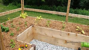 How To Keep Deer Out Of Vegetable Garden by Amazon Com Deer Proof Just Add Lumber Vegetable Garden Kit 8