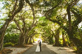 swanky soiree events event design u0026 wedding planner u2013 elyse and