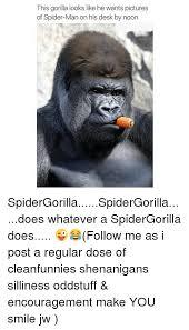 Spiderman Meme Desk - 25 best memes about picture of spider man picture of spider