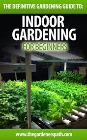 186 best herbs and vegetable garden images on pinterest plants