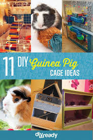 11 diy guinea pig cage ideas pig stuff animal and cavy