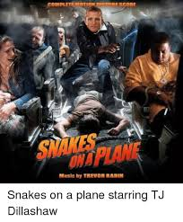Snakes On A Plane Meme - snake on a plane someone get samuel l jackson they just found