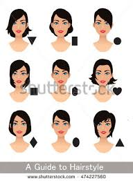 hair styles for head shapes hairstyles different face shapes short haircut stock vector
