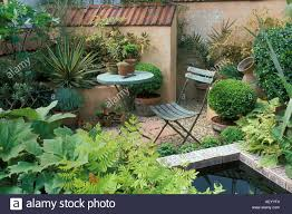 style courtyards a small mediterranean style courtyard garden rhs chelsea flower
