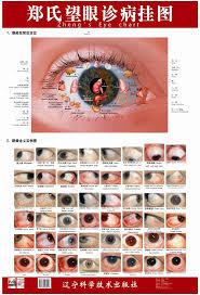 62 best eyes and iridology images on pinterest eye color irises