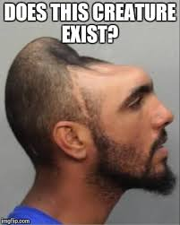 Meme Head - have you ever seen a ball head imgflip