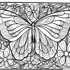 butterfly coloring pages for adults all about coloring pages