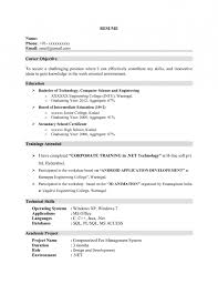 Examples Of Resume Title by Resume Name Examples With Resume Title Examples For Entry Level