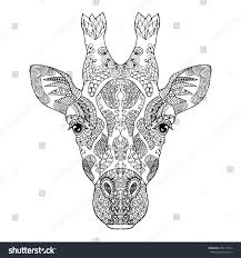 zentangle stylized doodle vector giraffe head stock vector
