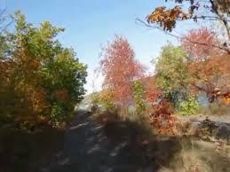 michigan fall colors trip fall foliage videos