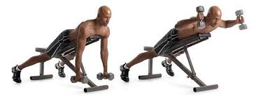 Dumbbell Exercises Chest No Bench - the top 3 rear deltoid exercises